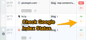 Best Way To Get Backlinks Indexed Fast